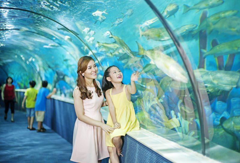 Điểm vui chơi trẻ em ở Hà Nội