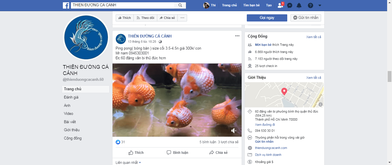 cửa hàng cá cảnh sài gòn