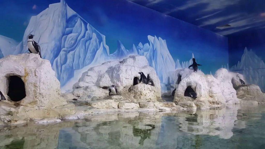 khu vui chơi có thủy cung ở Hà Nội
