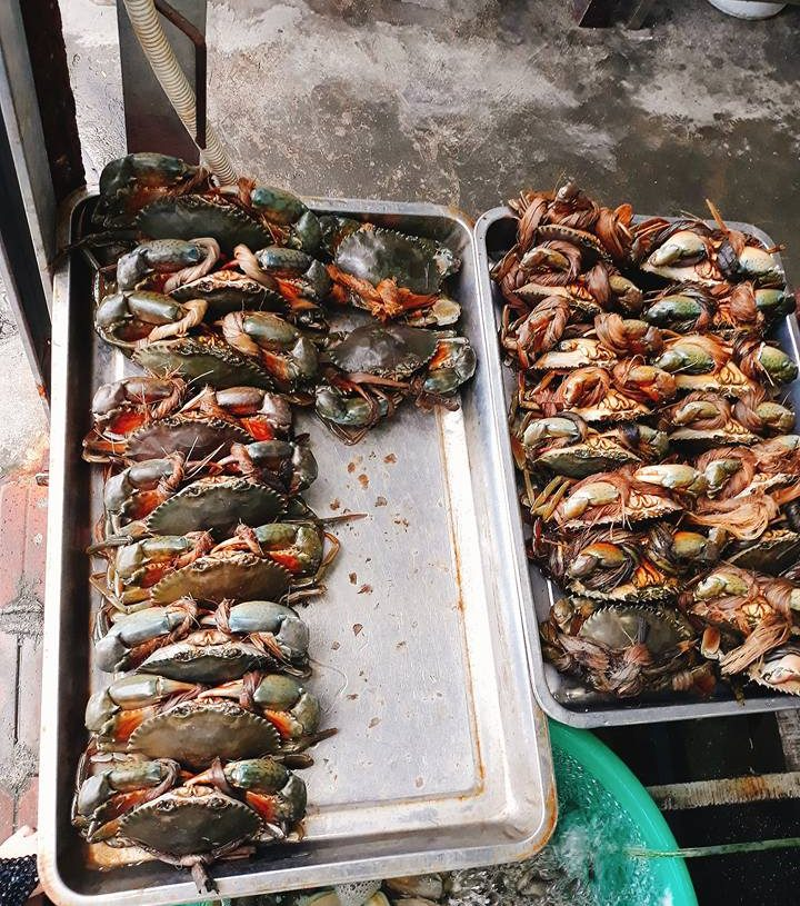 Top 10 Quán Ăn Đường Trần Phú Nha Trang Cho Các Tín Đồ Ẩm Thực