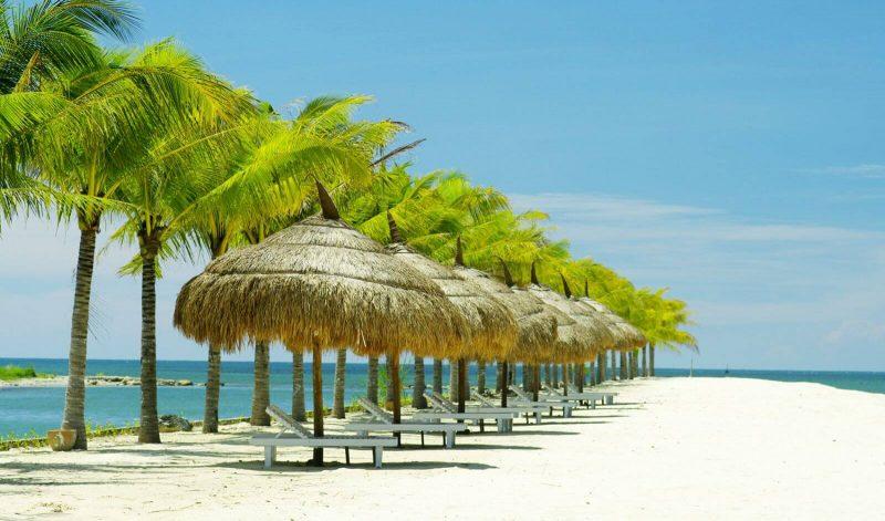 Tour Đảo Khỉ Đảo Hoa Lan vịnh Nha Phu