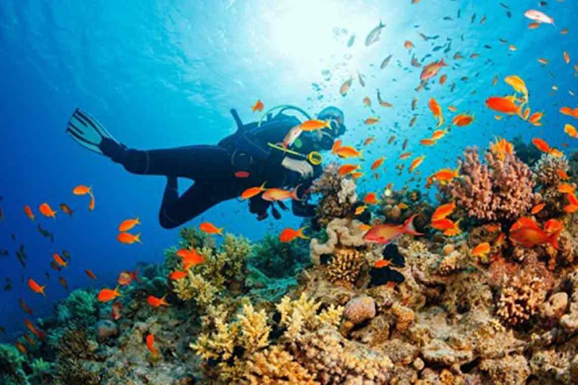 Tour lặn biển hòn Mun hòn Một Nha Trang