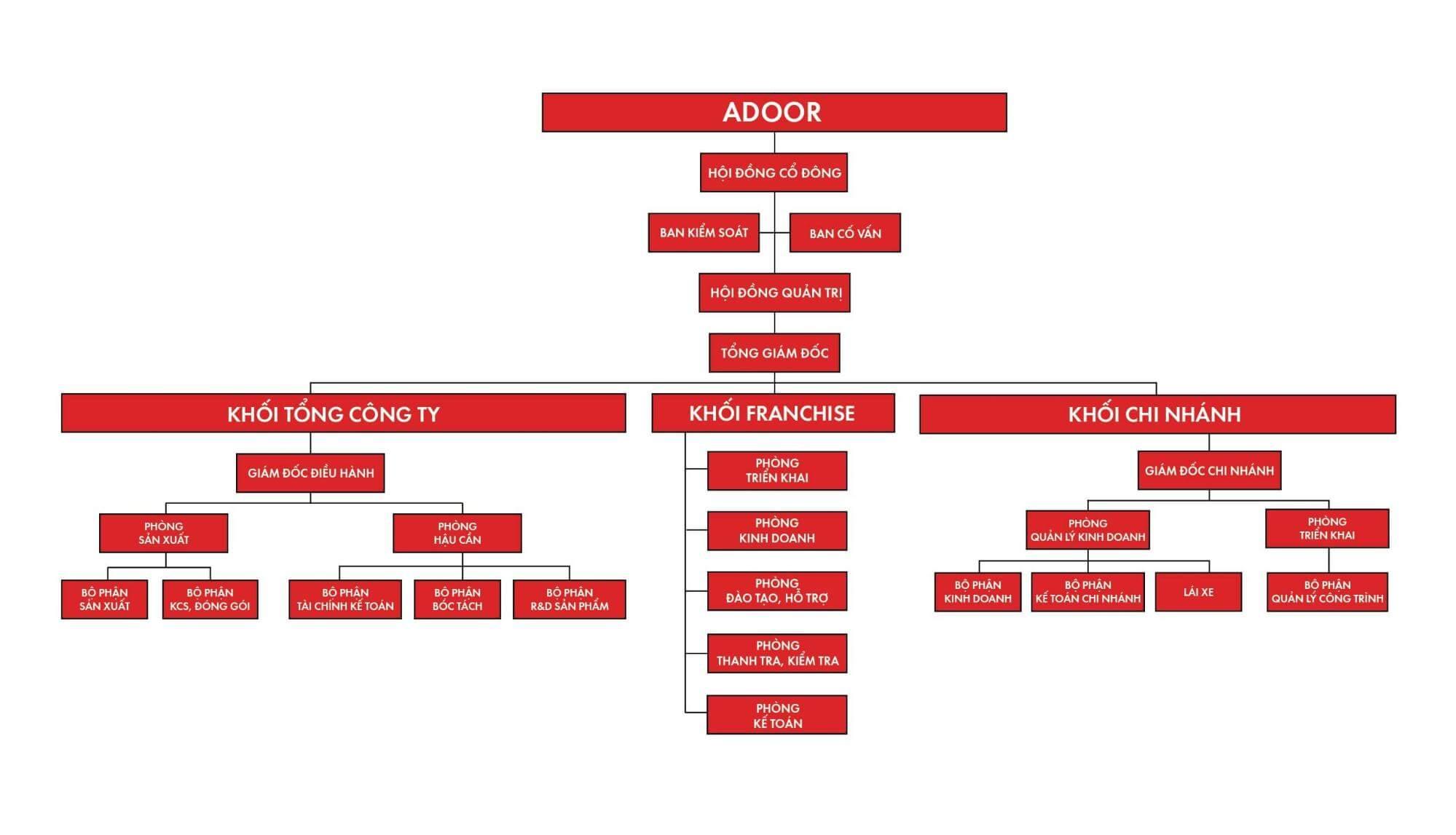 Cơ cấu tổ chức của Adoor rõ ràng và thống nhất