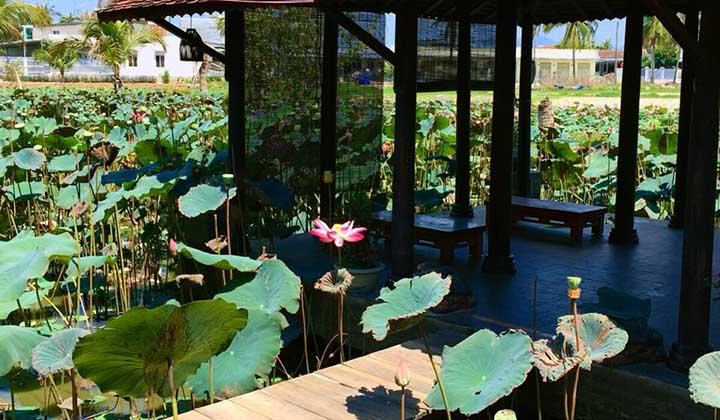 Nhà Hàng Chay Tại Nha Trang
